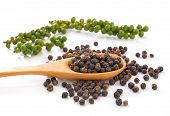 Spoon With Whole Black Pepper Granules And Bunches Of Fresh Green Pepper Isolated On White Backgroun