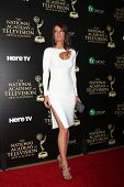 LOS ANGELES - JUN 22:  Michelle Stafford at the 2014 Daytime Emmy Awards Arrivals at the Beverly Hil