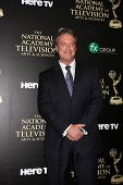 LOS ANGELES - JUN 22:  Todd Newton at the 2014 Daytime Emmy Awards Arrivals at the Beverly Hilton Ho
