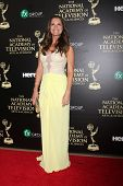 LOS ANGELES - JUN 22:  Melissa Clare Egan at the 2014 Daytime Emmy Awards Arrivals at the Beverly Hi