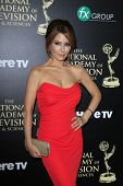 BEVERLY HILLS - JUN 22: Lisa LoCicero at The 41st Annual Daytime Emmy Awards Press Room at The Bever