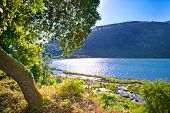 Panoramic view on Butrint lake  in National Park of Butrin, Albania.