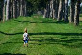 Small Boy On A Forest Road.