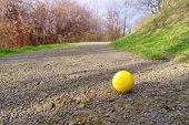 Lonely Tennis Ball
