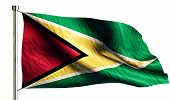 Guyana National Flag Isolated 3D White Background