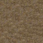 Dried Grass. Seamless Tileable Texture.
