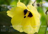 Maldives Flower Calendar 2015 In English