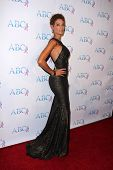 LOS ANGELES - NOV 22:  Nicole Murphy at the ABC 25th Annual Talk Of The Town Black Tie Gala at the Beverly Hilton Hotel on November 22, 2014 in Beverly Hills, CA