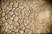 Grunge background of cracked dried mud