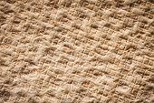 Coconut Fiber Mat Back