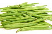 Common Bean (phaseolus Vulgaris)