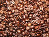 Freshly Roasted Coffee Beans Background