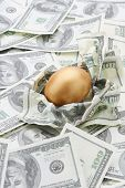 A golden egg on american dollars