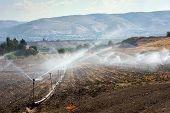 Irrigation In Israel