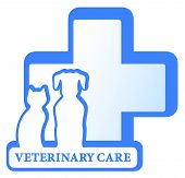 stock photo of cross-breeding  - vector veterinary isolated symbol with dog cat and medical cross - JPG