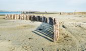 Curved Row Of Wooden Poles On The Beach