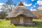 pic of serpent  - Part of viking age village replica in southern Sweden in early spring - JPG