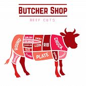 pic of flank steak  - Butcher shop cuts of beef  - JPG