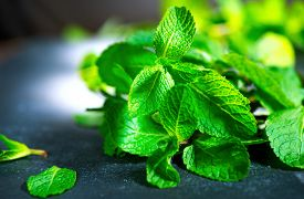 picture of mint-green  - Mint - JPG