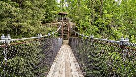 picture of ravines  - Swing bridge crosses over a ravine - JPG