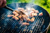 Grilling Delicious Variety Of Meat On Barbecue Charcoal Grill. poster