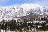 Mountain in Alaska Range in the Spring