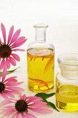 Óleo essencial de Coneflower em garrafa - foodstuff