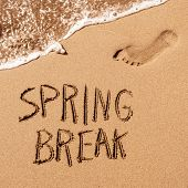 high angle view of the text spring break written in the wet sand of the seashore, in a quiet beach,  poster