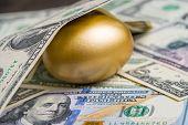 Shiny Golden Egg Under Pile Of Us America Dollar Banknotes Money Metaphor Of Finding The Unbelievabl poster