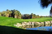A Behind The Green View Of A Beautiful Golf Hole And Green Surrounded By Palm Trees And A Pond In Pa poster