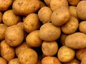 Fresh Market Potatoes