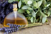 Perfume Bottle With Lavender Scent. Lavender Flowers On Background. poster