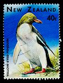 NEW ZEALAND - CIRCA 1991: A stamp printed in New Zealand, shows a  penguin, circa 1991