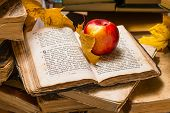 Apple and open old book