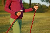 Nordic Walking In Summer