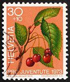 Postage stamp Switzerland 1973 Sweet Cherries, Prunus Avium, Bird Cherry