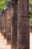 Polonnaruwa Audience Hall Columns Carvings Row