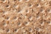 image of wasa bread  - Close up of a crispbread with sesame seeds as a food background - JPG