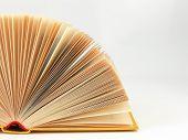 Fan Pages