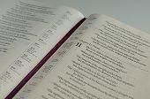 Studie Bibel