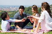 picture of nic  - Happy Young Friends Toasting Wine Glass - JPG