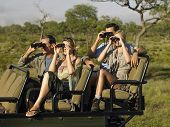 Gruppe von Touristen sitzen in Jeep und looking through binoculars