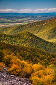 stock photo of appalachian  - View of the Appalachian Mountains and Shenandoah Valley from Blackrock Summit along the Appalachian Trail in Shenandoah National Park Virginia - JPG