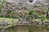 Tokyo Park