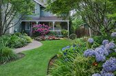 image of horticulture  - Entrance to a home through a beautiful garden highlighted by rose and blue hydrangeas.