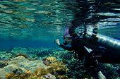 Female diver taking film underwater