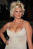 Anna Nicole Smith Lookalike at the premiere of ANNA NICOLE. Fox Studios, Los Angeles, CA. 08-30-07