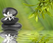 stock photo of bamboo  - Spa still life with white flowers on black stones and bamboo leafs in the water - JPG