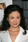 Reiko Aylesworth at the premiere of