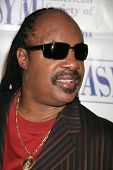 Stevie Wonder at the 15th Annual American Society of Young Musicians Spring Benefit Concert and Awar